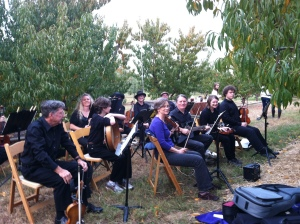Isom's Orchard 2012